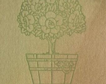 Memory of Roses Postcard