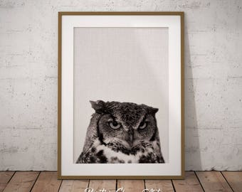 Woodland Owl Art, Forest Owl Art, Forest Animals Owl, Nursery Wall Owl Art, Woodland Owl Print, Owl Art Print, Owl Print, Forest owl print