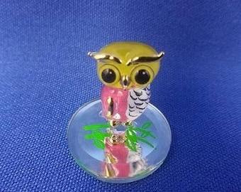 Glass Baron Owlet