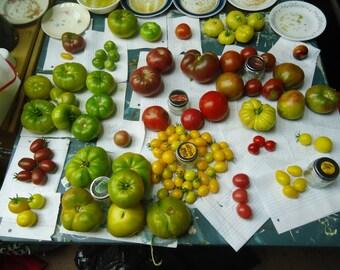 SEEDS OF LIFE heirloom tomato variety pack 12 varieties!
