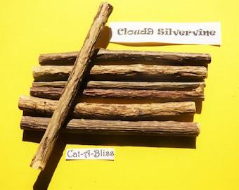 Cloud9 Silvervine (like catnip)