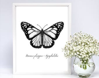 Butterfly graphic, Printable Poster, Home decor, Digital File, PDF, JPG
