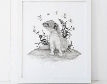Weasel Fine Art Print 8x10 Giclee Wall Art