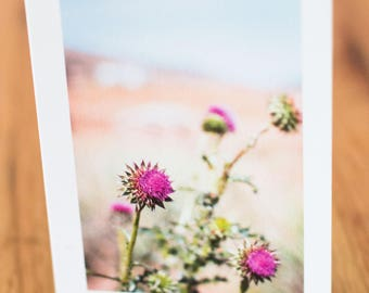 Colorado Flowers, Travel Photo Card with envelope, Blank Inside