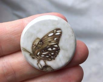 Button.....Butterfly