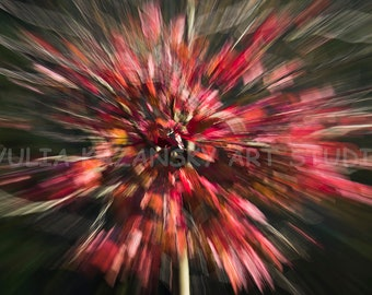 Instant digital download Red Explosion fine art abstract photography Red tree nature photography ICM photo Printable photography