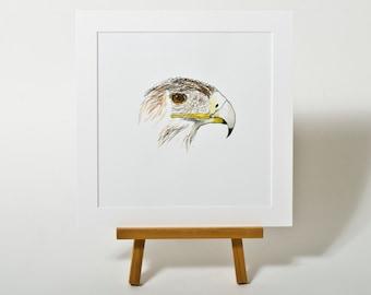 Vogel IV