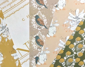 Gift Wrap Sheets 5-pack - Assorted birds and botanicals!  Heavy paper for presents at all occasions!