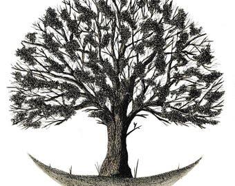 Spring tree, 1/4 series