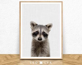 Woodland animals nursery printable art, raccoon print, raccoon wall art, nursery wall art, nursery decor, printable decor, INSTANT DOWNLOAD