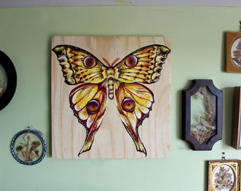 Hand Painted Comet Moth on Large Wooden Plaque- Original Acrylic Colorful Madagascan Moon Moth Painting- Insect, Nature Art Entomology Art-
