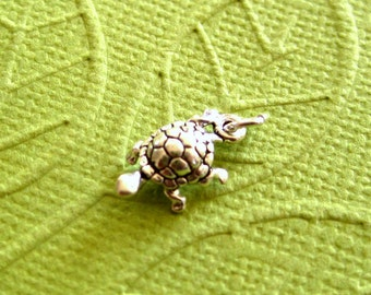 Sterling Silver Turtle Petite Charm
