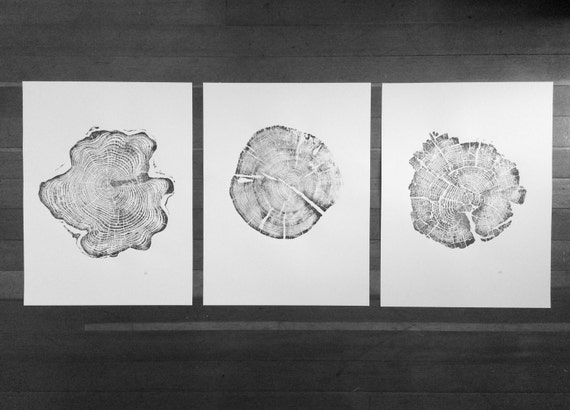 Triptych Tree Ring Art, Tree ring art prints from Alaska, Tetons, Yellowstone, Real Tree stump art, hand pressed tree ring prints, christmas