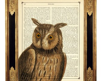 Owl Dictionary Art Print Woodland Forest Animal Bird Poster  - Vintage Victorian Book Page Art Print Steampunk