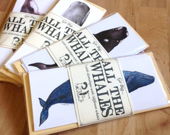 Set of 6 Whale Cards- oversized cards with whale species illustrations