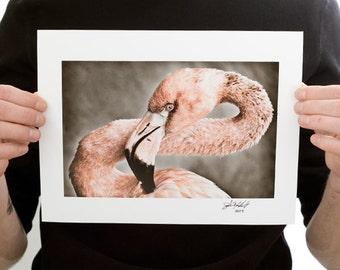 Pink Flamingo Photograph (9 x 6 inch Fine Art Print) Nature Photography Bird Decor