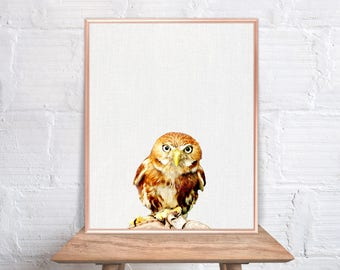 Owl wall art / Owl home decor / Owl Print / home decor Owl / Owl Art / Owl Wall Decor / digital photo wallpaper picture download #95