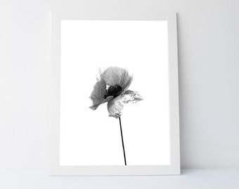 Poppy print, black white wall art, minimalist print, modern print, wall decor print,minimalist wall art, printable art, black white