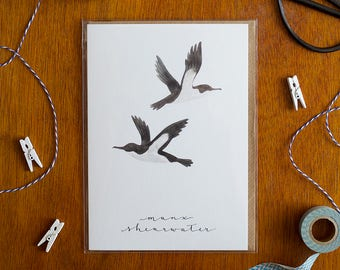 Illustrated Seaside Card 'Manx Shearwater'/'Aderyn Drycin Manaw' with Modern Calligraphy