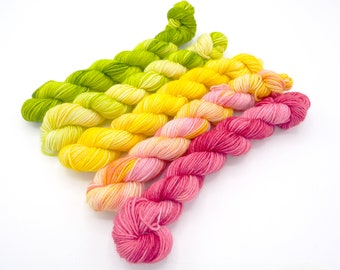 Flamingos on a Croquet Lawn Mini Skein Set,  Lovely Sock Hand Dyed Yarn - In Stock