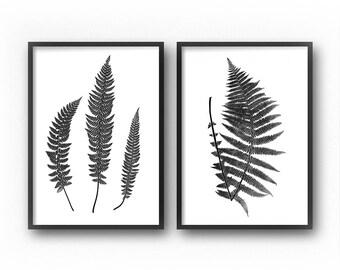 Black and White Botanical Prints, Fern Prints, Wall Art Set, Printable Art, Diptych, Botanical Print Set, Farmhouse Wall Decor, Art