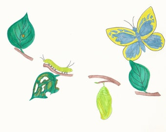Butterfly metamorphosis including egg, caterpillar, cocoon and butterfly, watercolor painting, Fine art print, JPG file, Instant Download