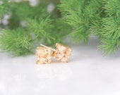 Botanical Accessories - Gold Leaf Cube Earrings - Mother's Day gifts, Gifts for her, Terrarium Jewelry