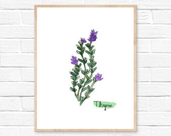 Watercolor Thyme Herb Print No.1011, Kitchen Decor, Thyme, Herbs Kitchen Decor, Watercolor Print, Kitchen, Herbs, Spice Print, Kitchen Art