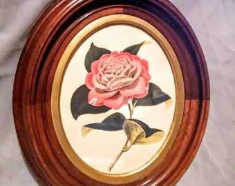 Antique Framed Print of Rose