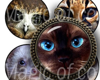 Fauna's Face -  63  1 Inch Circle JPG images - Digital  Collage Sheet