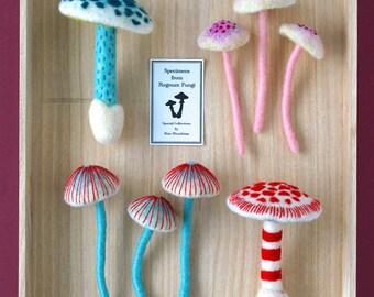 Print: Mushrooms - art photo needlefelting sculpture fibre toy specimen felt plush wall decor woodland nature forest HineMizushima poster