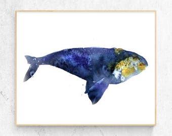 Right Whale Watercolour Fine Art Print, Coastal Decor, Nautical Decor, Large Wall Poster, Beach House Printable Digital Download