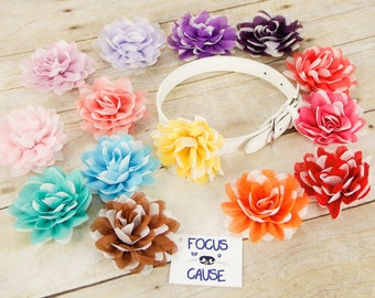Two Tone Dog Collar Flower Attachment, (Collar not included), Pet Photographer, Prop, Dog Accessory, Focus for a Cause