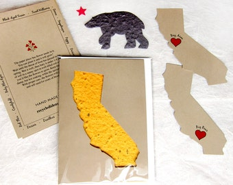 Plantable California Gift Card Set - Flower Seed Paper California State Thank You - Brown Bear Golden State