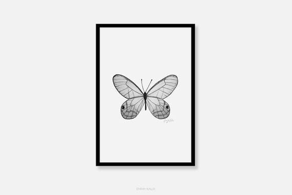 Butterfly Wall Art Black And White Print Pencil