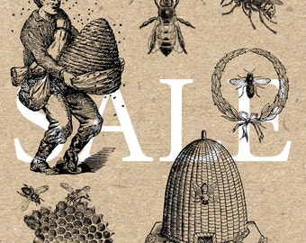 Sale Honey Bee Apis Collection Instant Download Digital printable vintage drawing clipart  graphic black and white for art print HQ 300dpi