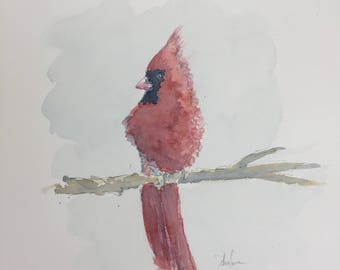 Cardinal Original Watercolor2