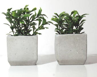 Set Of Two Artificial Plants With Concrete Planter / Home Decor / Office  Desk Decor/