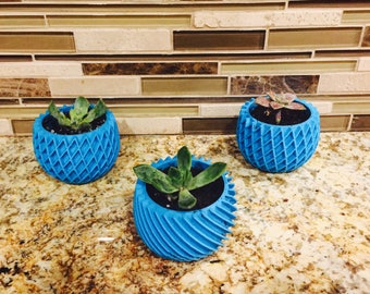 Trio of Succulent planters - combo of 3!