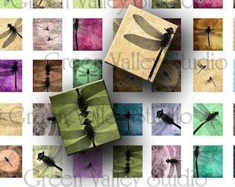 INSTANT DOWNLOAD Digital Art Images Collage Sheet Dragonfly Dragonflies Insects .875 x .75 Inch for Scrabble Tile Pendants (S15)