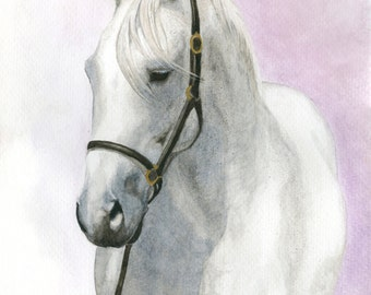 Fine Horse Portrait Art Print Giclee Watercolor Painting