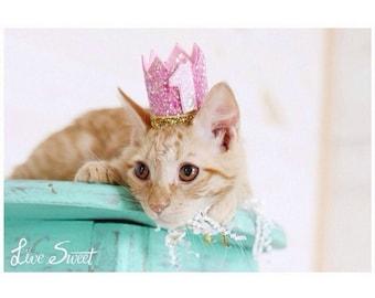Cat Crown || Cat Hat || Kitty Cat Birthday Crown || Animal Crown || Animal Party || Pet Birthday Party Outfit || Cat Costume || Cat Toys