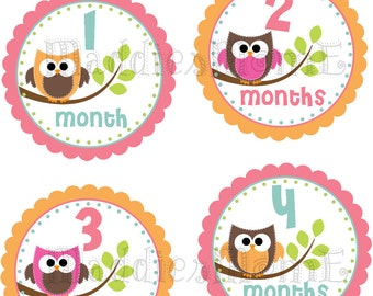Monthly Baby Girl Stickers Baby Month Stickers, Monthly Bodysuit Sticker, Monthly Stickers Owls (Tabitha)