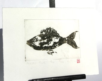 Pacific Fish - Original Etching