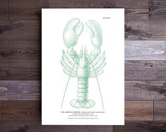 Lobster Print in Green- Maine Poster Beach Print Nautical Art Ocean Print Wall Art Beach Art Nautical Print Beach Decor Valentine's Day Gift