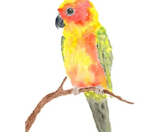 Watercolor parrot painting - sun conure parrot art - tropical decor watercolor painting - bird print - tropical painting - yellow, 8X10