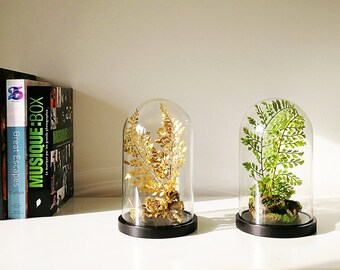 Forest of artificial plants, Cabinet of curiosities, dome terrarium cloche glass, Christmas birthday gift, Garden decor