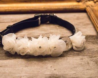 """Ivory Flower dog collar, Wedding dog collar, Engagement dog collar, Save the date dog collar, Medium 14""""- 20"""""""