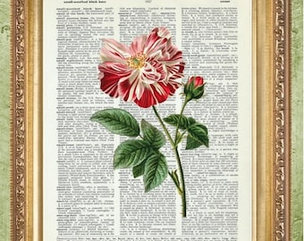 Flower Dictionary Art Prints Art Print Wall Decor Vintage Dictionary Print Dictionary Prints Floral Wall Decor