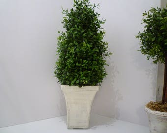 TOPIARY. BOXWOOD TOPIARY. Cottage & Home Decor Greenery. Potted Topiary. Shabby Chic, Cottage Decor. White  Distressed Pot Topiary.